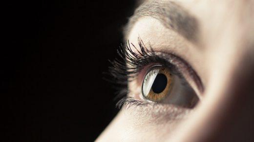 gözün ilk tabakası